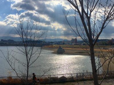 狭山池キラキラ