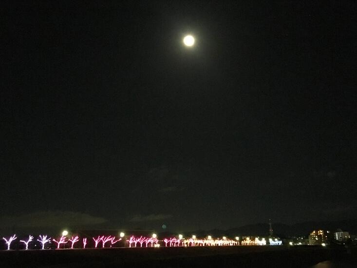 イルミネーションの上に、でっかい月がポン☆