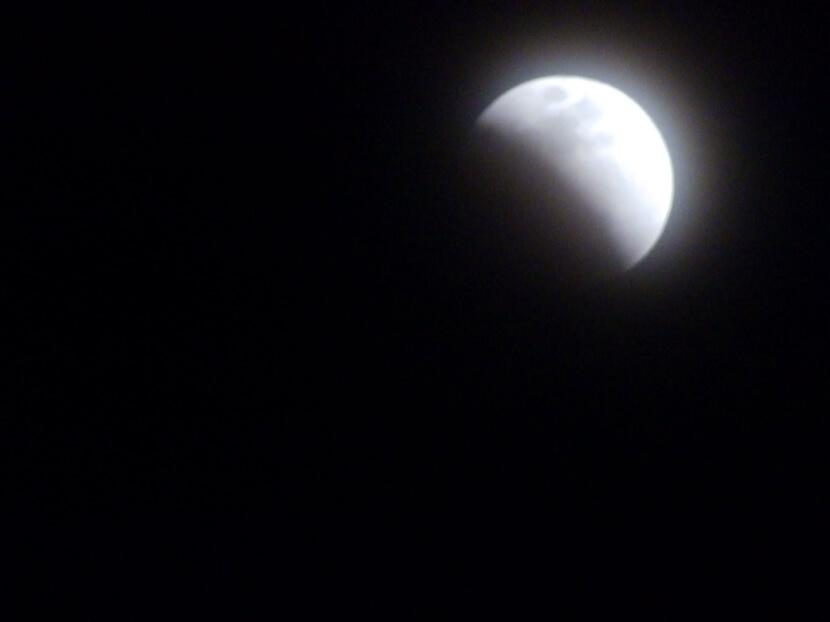 月、かけていくポンよ~☆