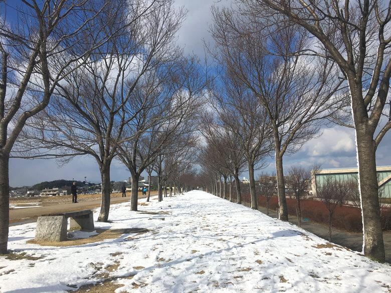 雪の道だポ~ン☆