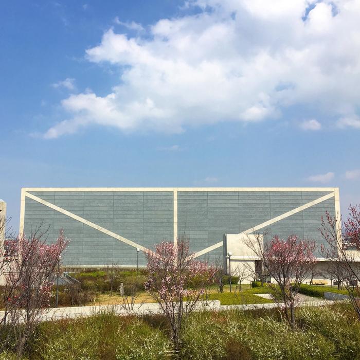 桜と博物館