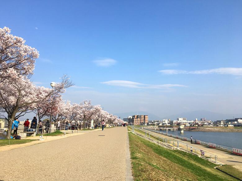 今日もいい天気、たくさんのみんな、楽しんでるポンよ〜☆