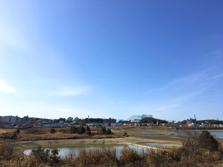 太陽ピカーン☆ 青い空だポーン(*゚▽゚*)