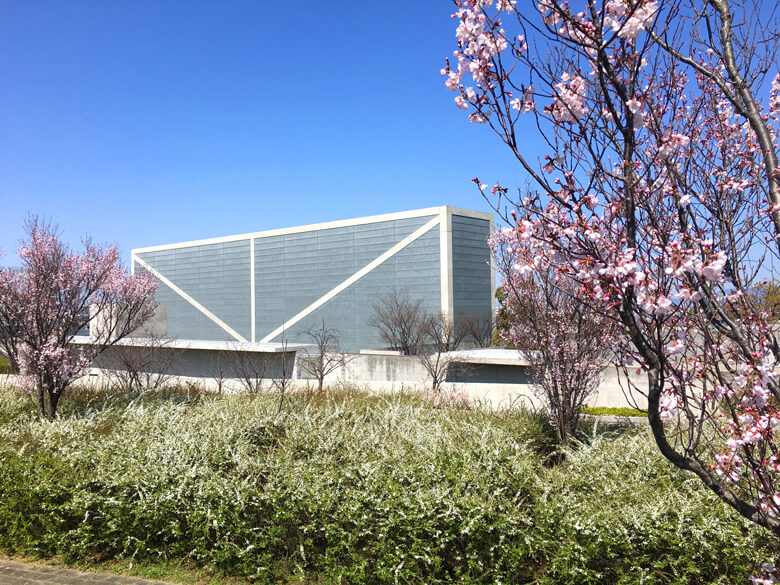 桜とユキヤナギと博物館がポン☆