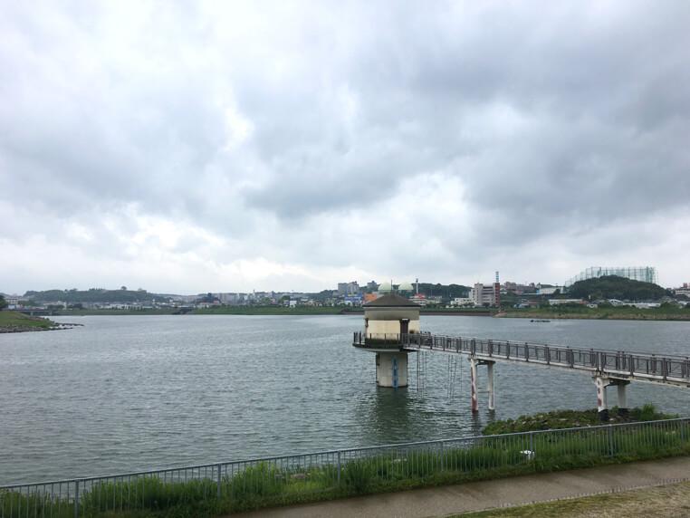 風ピューピュー♪雨やんでるポンよ~☆