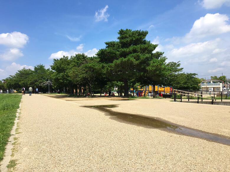 さやか公園、子供たちの元気な声いっぱいだポーン☆