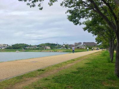 狭山池散歩