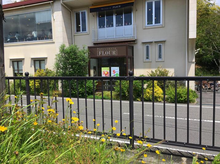 フラワーの店の前、ブタナの花いっぱい咲いてるポーン☆