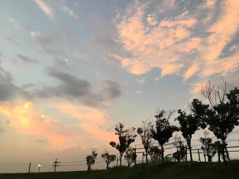 ピンク色の雲だポ~ン☆