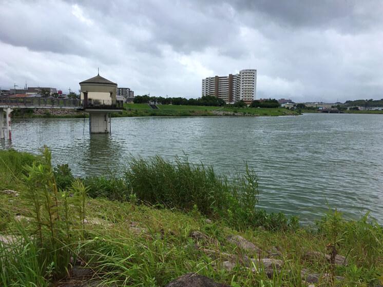 雨ポロポロだポン(*^ω^*)