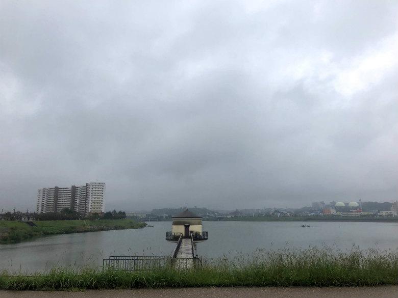 風ピュ〜ピュ〜、雨ポロポロだポン☆