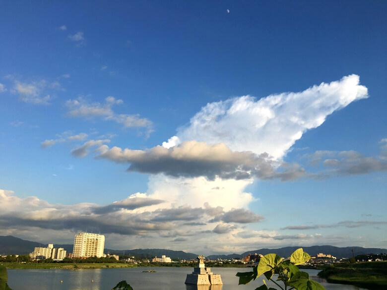 さっきと、雲の形かわってるポンよ~☆