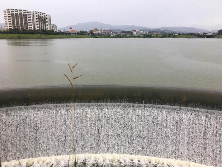 水いっぱい流れてるポン☆
