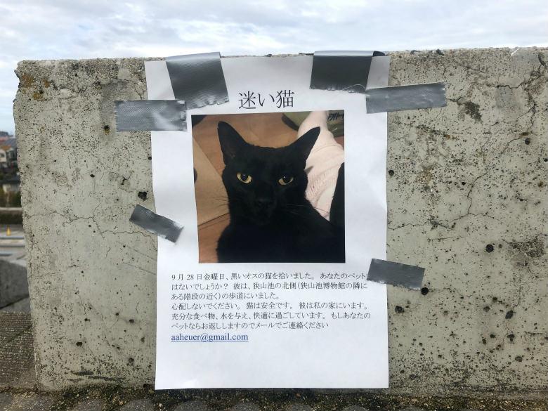 迷い猫の張り紙、はってるポン☆
