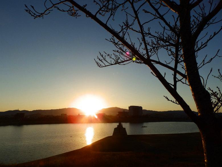 狭山池に初日の出がうつってるポン☆