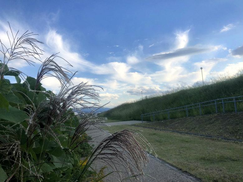 ふわふわ雲とススキがポン☆