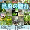 虫の謎を探る昆虫展 昆虫の魅力 2016年7月23日(土)~8月28日(日) 【博物館イベント】